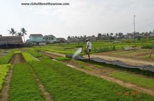 Labourer ses parcelles de terre fait partie du développement personnel.